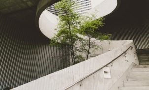 Green Sampa: o programa para startups