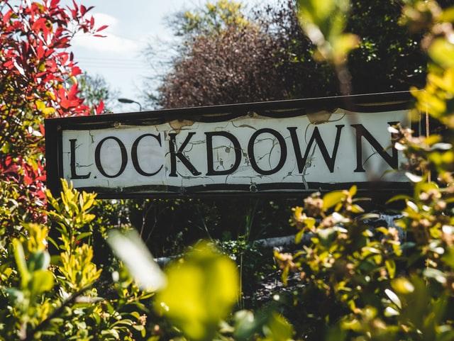 Fiuza questiona número de mortes da Covid-19 e lockdown