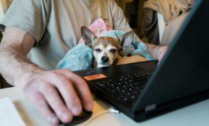 +25% dos profissionais de tecnologia querem trabalhar remotamente