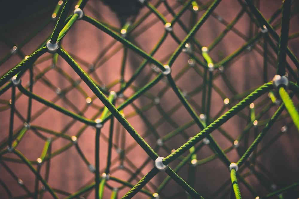 Blockchain no poder público: características e tipos