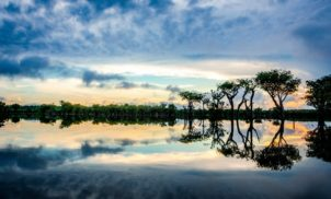 Amazônia, um bem brasileiro para o mundo