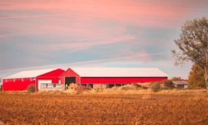 6 agritechs que estão revolucionando o agronegócio